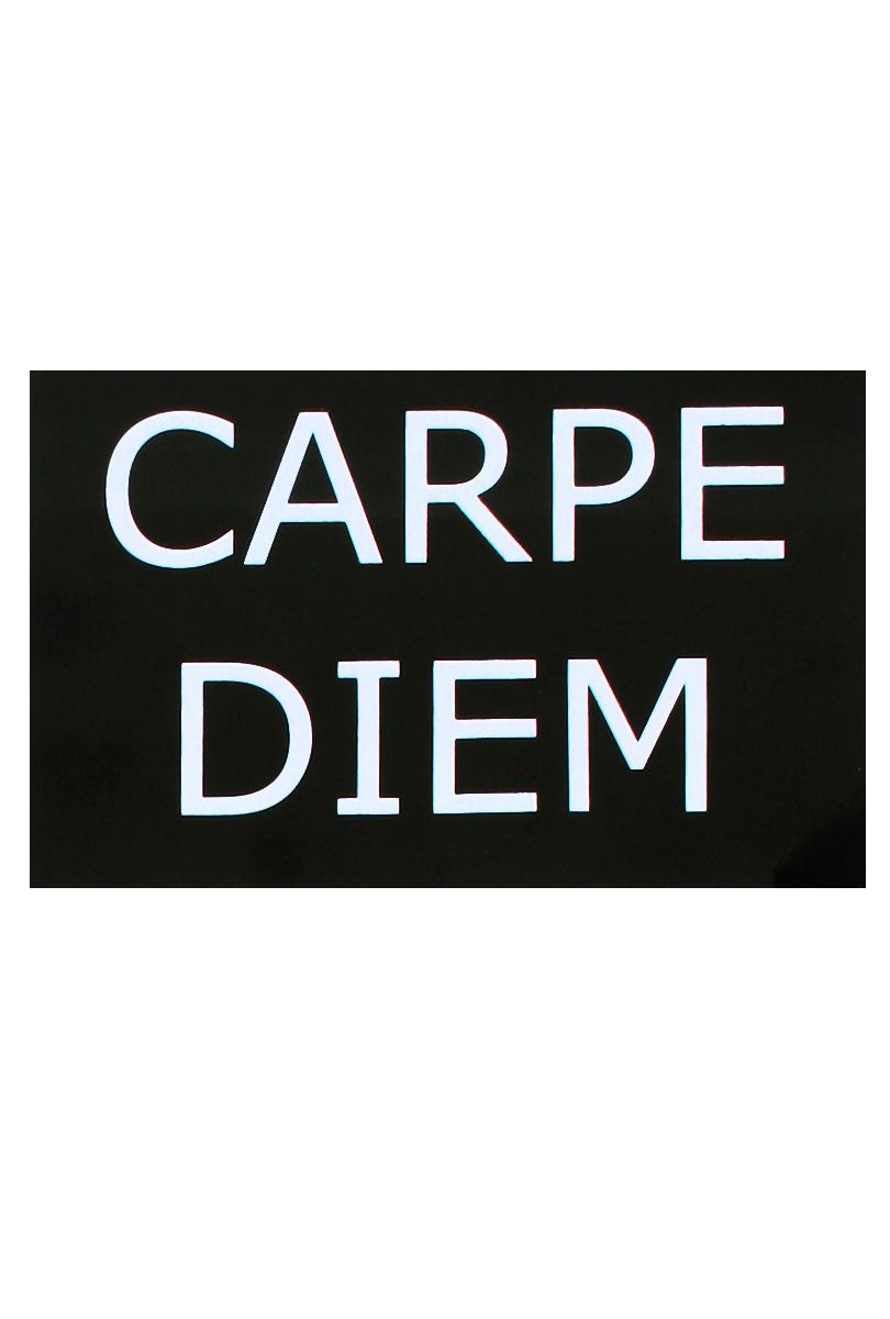 Skylt  carpe Diem