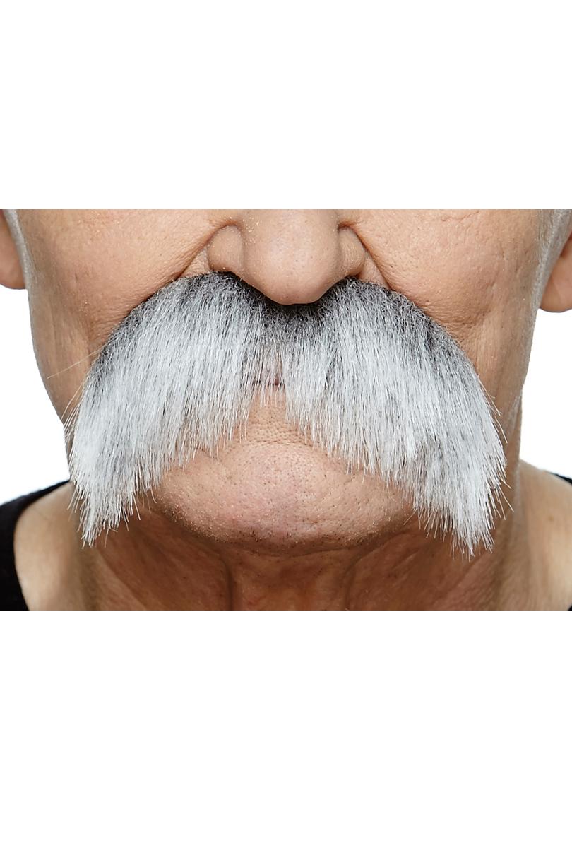 Mustasch sober, grå