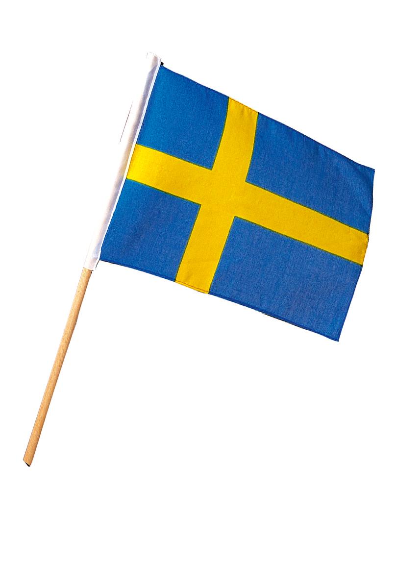 Svensk flagga,  20x30 cm