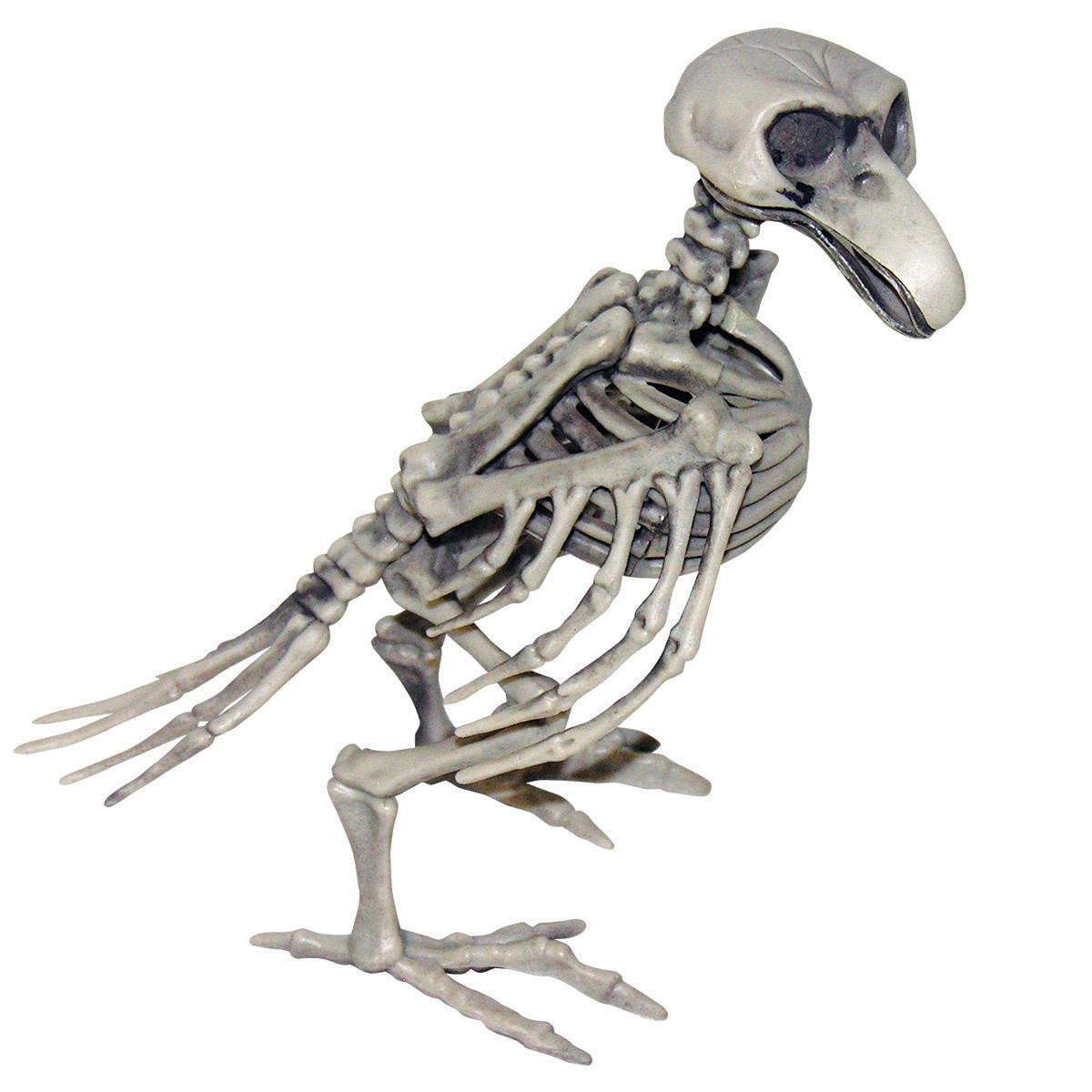 Fågelskelett dekoration