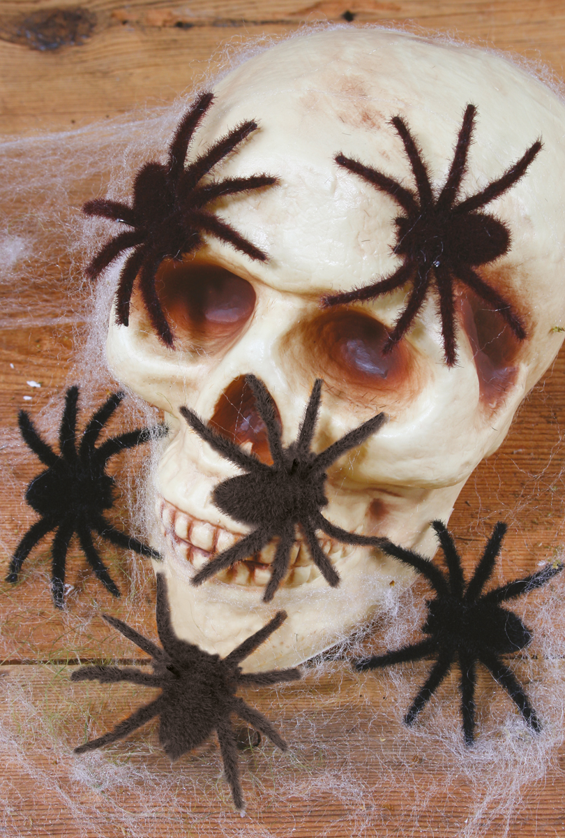 Håriga spindlar 6/ark