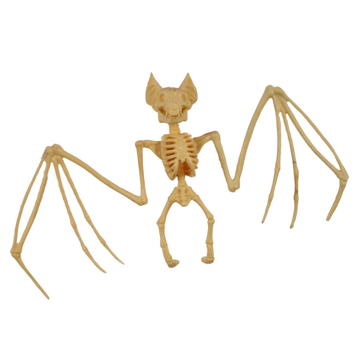 Prop, fladdermus skelett 27,5cm