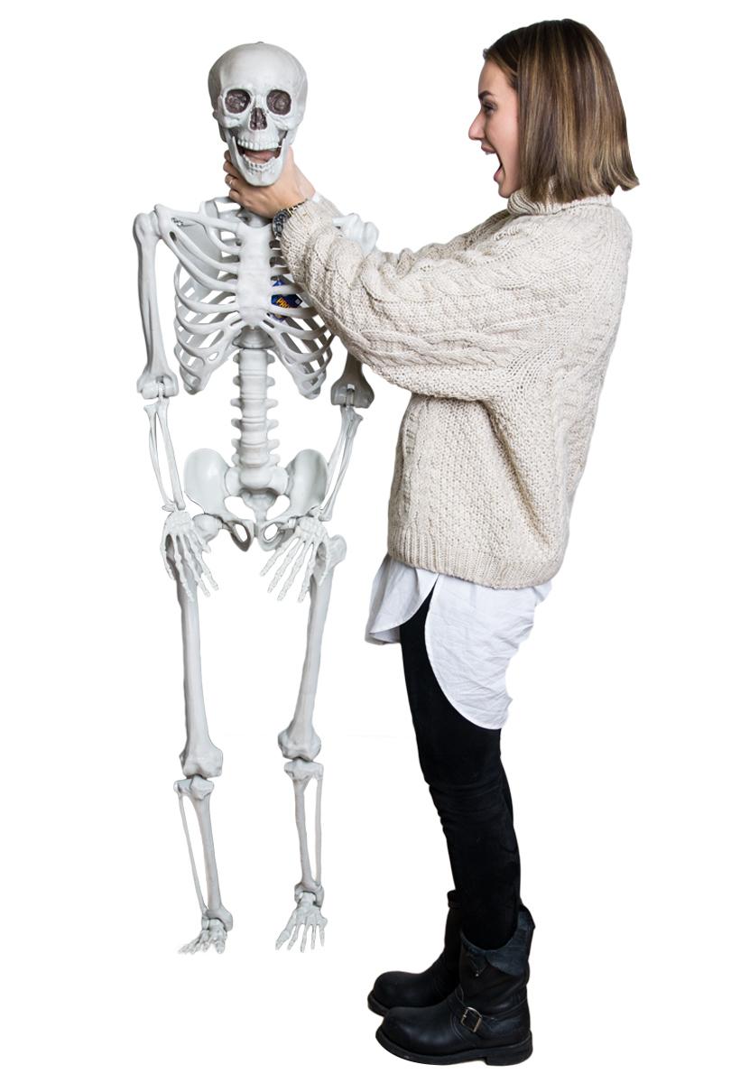 Prop skelett