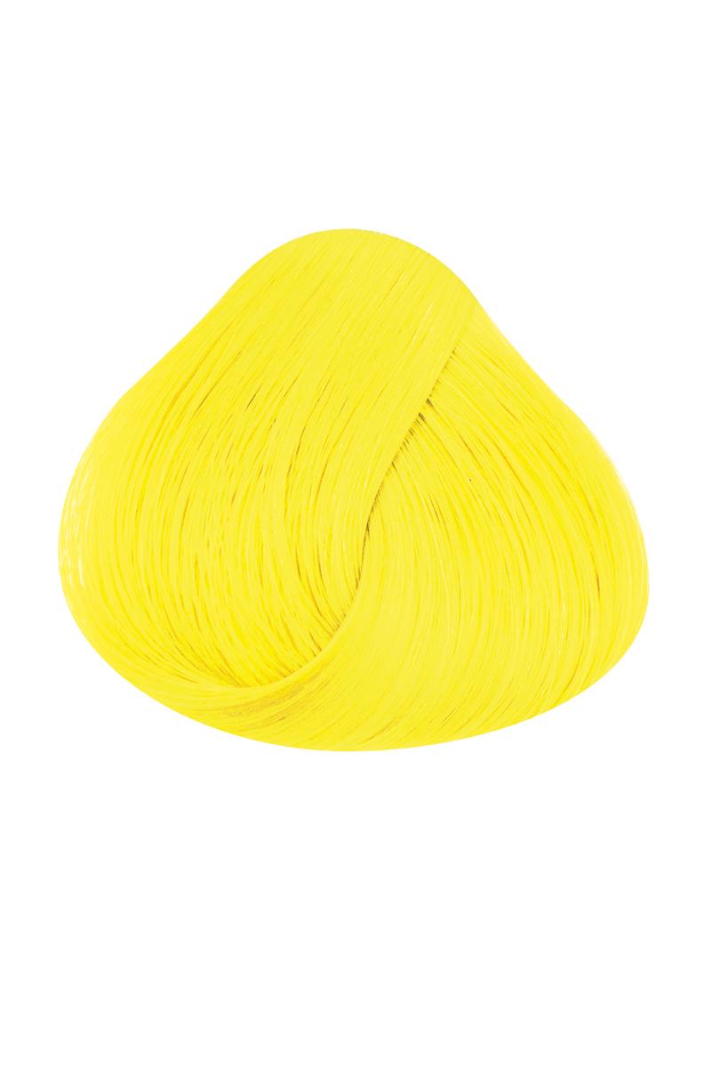 Directions, Bright Daffodil