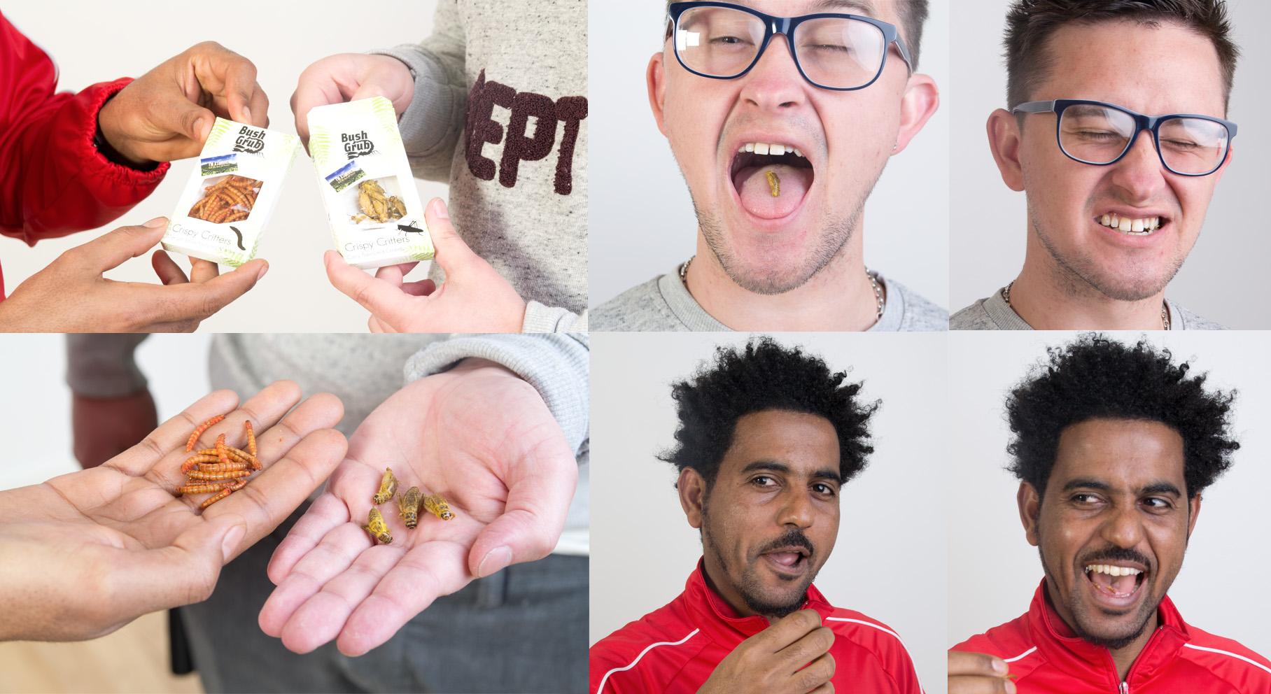 Vi testar ätbara insekter